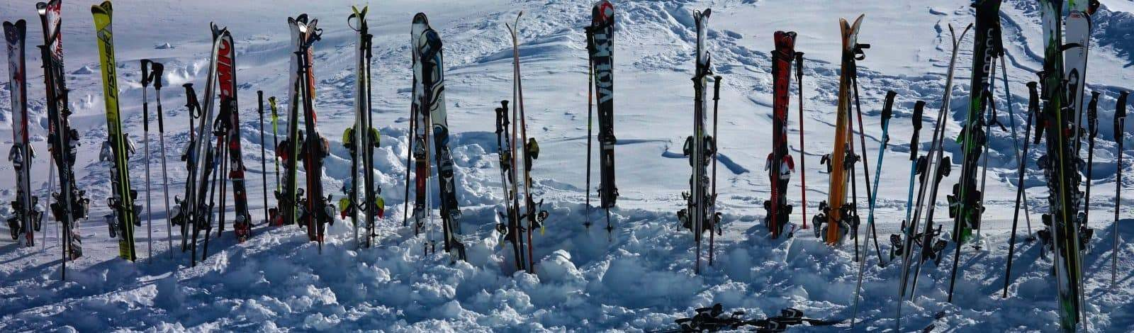 Ski Poles 999264 2